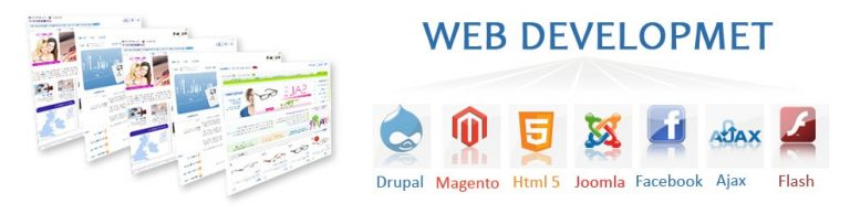 Process of Creating Web Design Development
